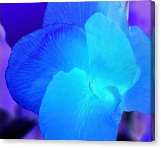 Blurple Flower Canvas Print