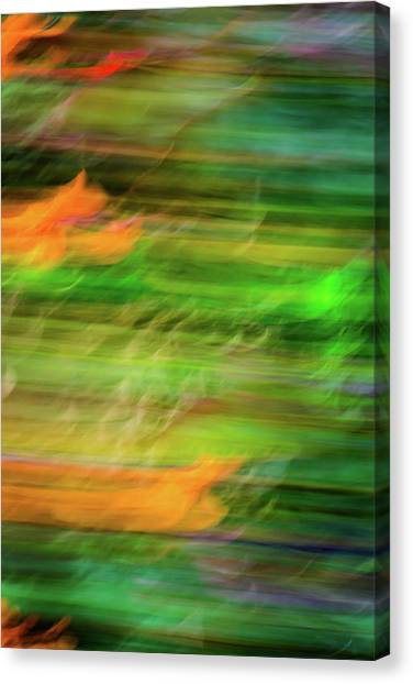 Blurred #11 Canvas Print