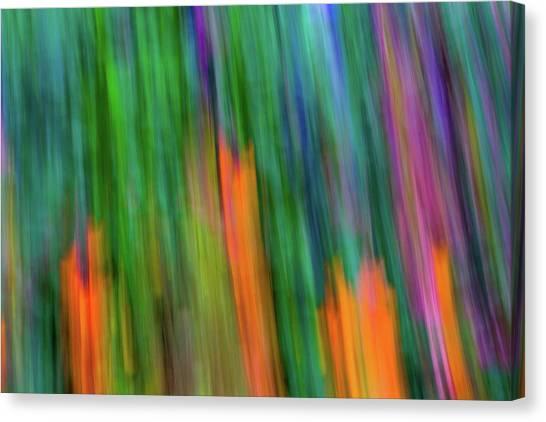 Blurred #2 Canvas Print