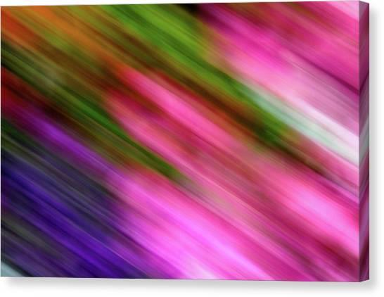 Blurred #6 Canvas Print