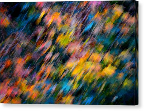 Blurred Leaf Abstract 4 Canvas Print