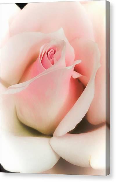 Blushing Petals Canvas Print