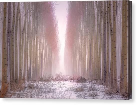 Boardman Tree Farm  Canvas Print