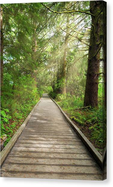Canvas Print - Boardwalk Along Hiking Trail At Fort Clatsop by David Gn