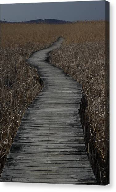 Boardwalk Canvas Print by Eric Workman