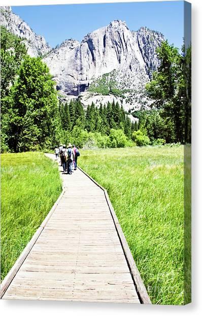 Boardwalk On Yosemite Meadow Canvas Print