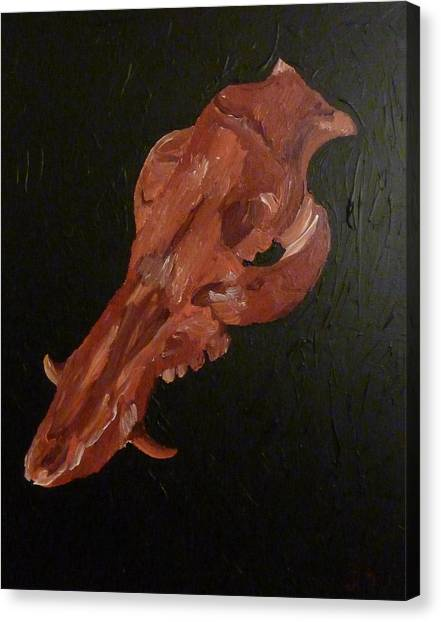 Boar's Skull No. 1 Canvas Print