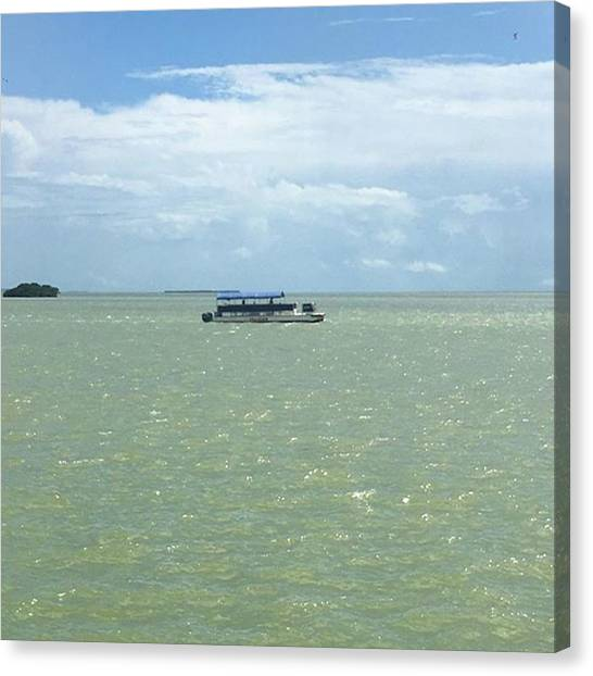 Everglades Canvas Print - #boat #tour At #flamingo #everglades by Patricia And Craig