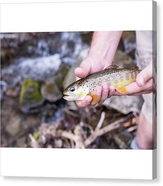 Trout Canvas Print - Bobby Caught His First Trout And I Got by Jamie Cook