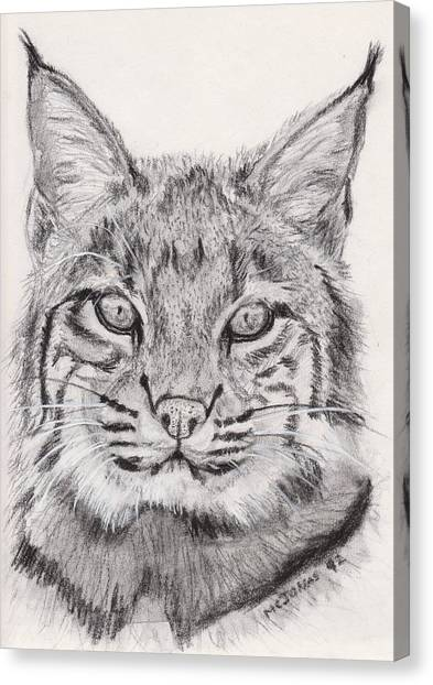 Bobcat Canvas Print by Marqueta Graham