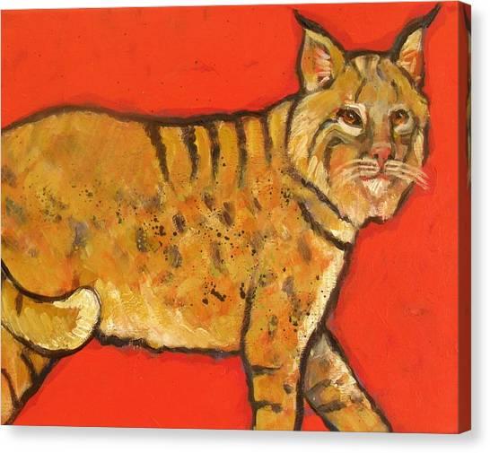 Bobcat Watching Canvas Print