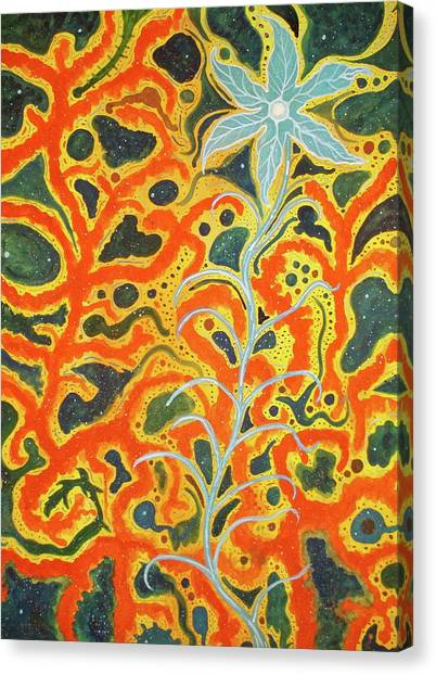 Bodhi Shunyata Canvas Print by Scott Harrington