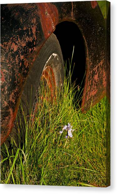 Canvas Print featuring the photograph Bodie 13 by Catherine Sobredo