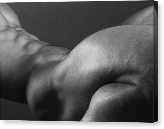 Bodybuilder Canvas Print - Bodyscape by Thomas Mitchell