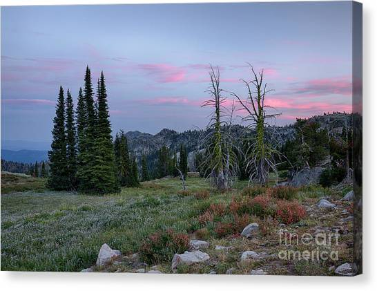 Boise National Forest Canvas Print - Boise National Forest Twilight by Idaho Scenic Images Linda Lantzy