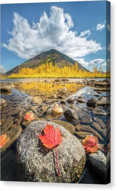 Canvas Print featuring the photograph Bold Fall Colors // Flathead River, Glacier National Park  by Nicholas Parker