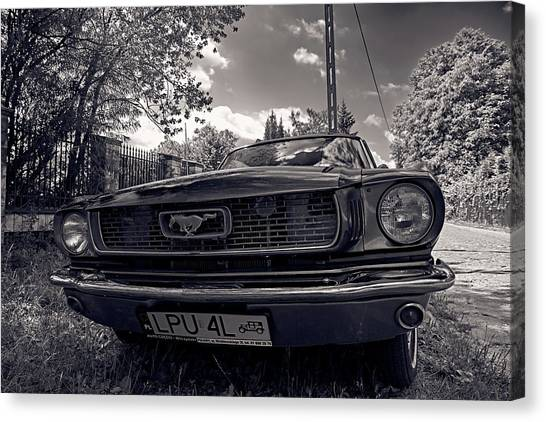 Canvas Print featuring the photograph Bold by Tgchan