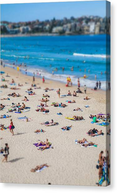 Swim Canvas Print - Bondi People by Az Jackson