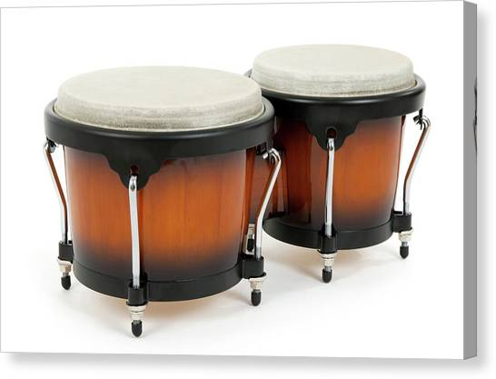 Percussion Instruments Canvas Print - Bongos On White Background by GoodMood Art