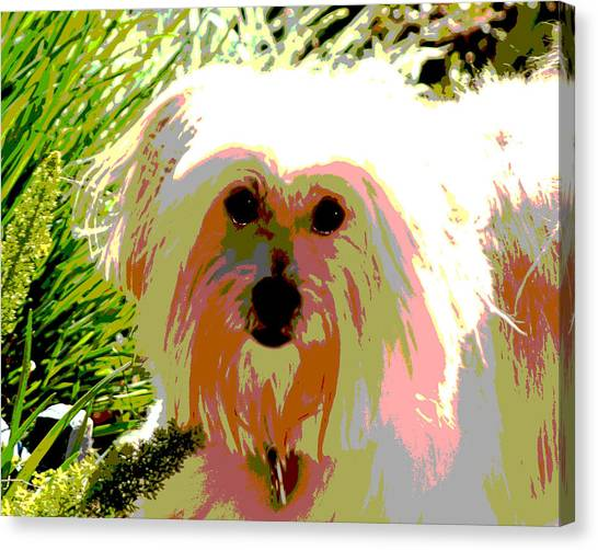 Bonnie In Color Canvas Print by Ellen Lerner ODonnell