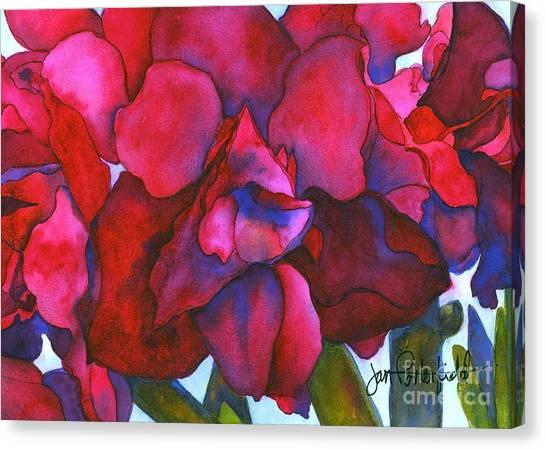 Amaryllis Canvas Print - Bonnie by Jeff Friedman