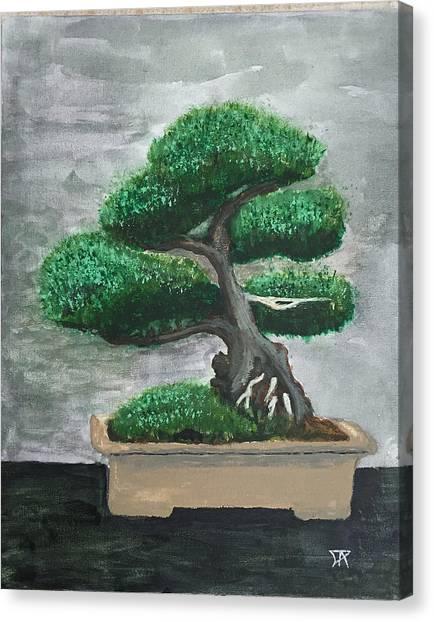 Bonsai #2 Canvas Print