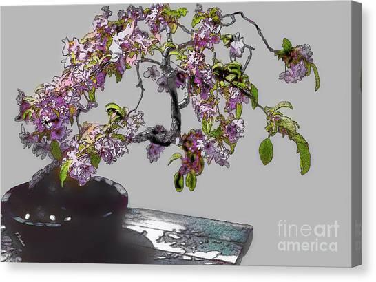 Bonsai Beauty Canvas Print by Linda  Parker