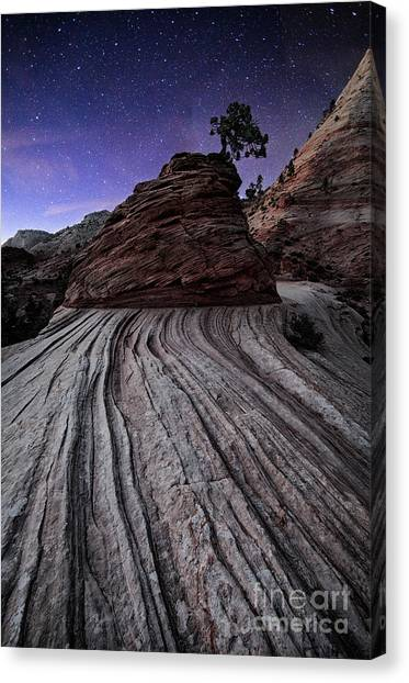 Bonzai In The Night Utah Adventure Landscape Photography By Kaylyn Franks Canvas Print
