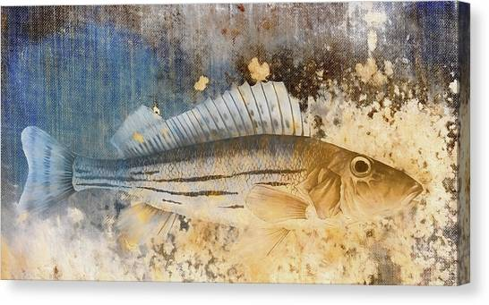 Trout Canvas Print - Book Of Fish Collage by Carol Leigh