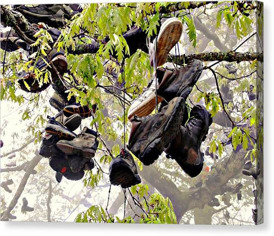 Boot Tree At Neels Gap Canvas Print