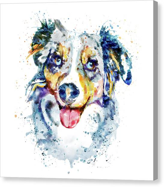 Border Collies Canvas Print - Border Collie  by Marian Voicu