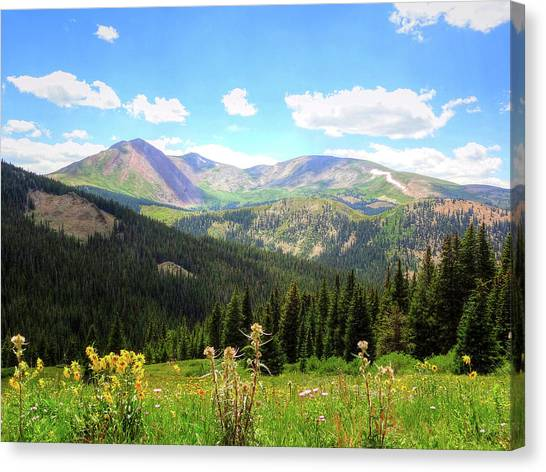 Boreas Pass Colorado Canvas Print