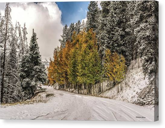 Boreas Pass Road Aspen And Snow Canvas Print
