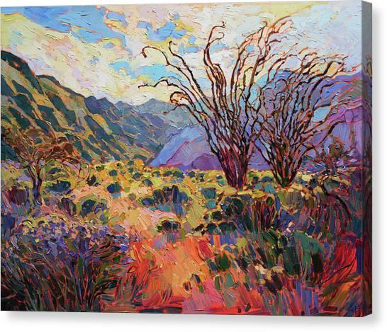 Borrego In Bloom Canvas Print