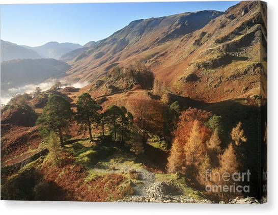 Borrowdale From Castle Crag Canvas Print by Bryan Attewell