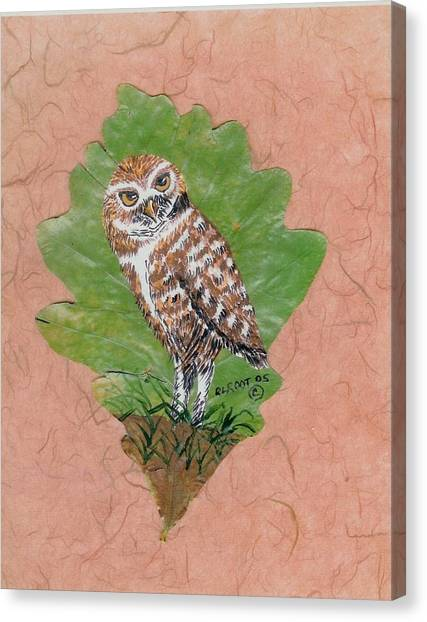 Borrowing Owl Canvas Print