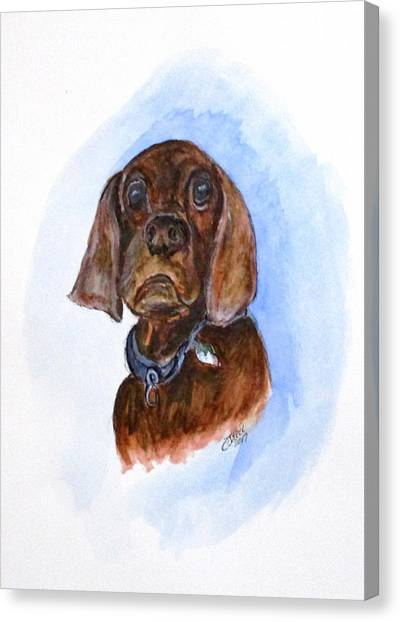 Bosely The Dog Canvas Print