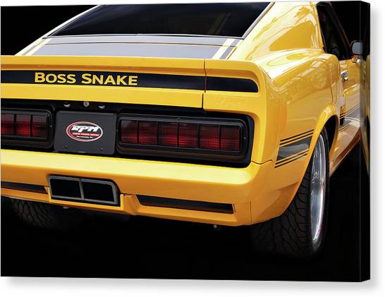 Boss Snake Canvas Print