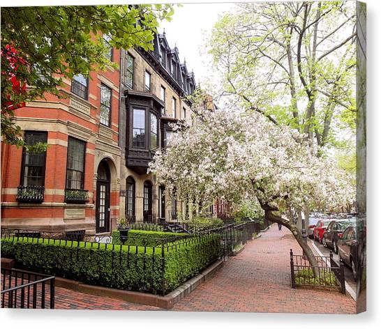 Boston Spring Canvas Print