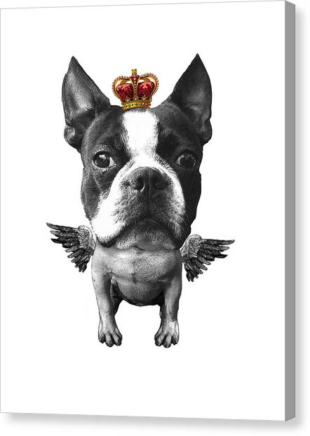 Terrier Canvas Print - Boston Terrier, The King by Madame Memento