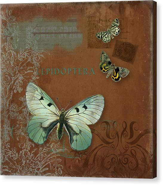 Printers Canvas Print - Botanica Vintage Butterflies N Moths Collage 4 by Audrey Jeanne Roberts