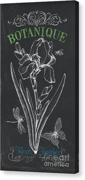 Irises Canvas Print - Botanique 1 by Debbie DeWitt