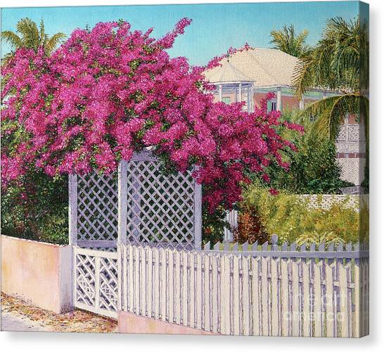 Bougainvillea Crown Canvas Print