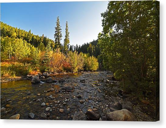 Boulder Colorado Canyon Creek Fall Foliage Canvas Print