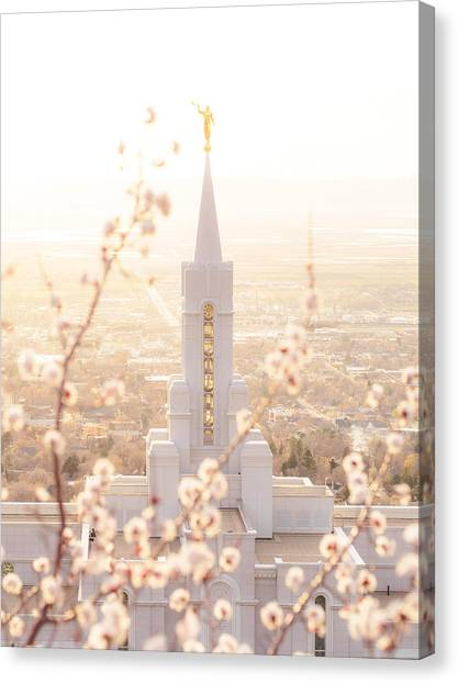 Bountiful Temple Blooms Canvas Print