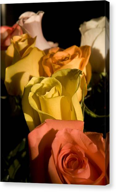 Bouquet In Line Canvas Print