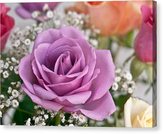 Bouquet Of Roses Canvas Print by Jeff Abrahamson