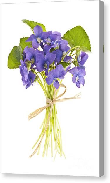 Knot Canvas Print - Bouquet Of Violets by Elena Elisseeva