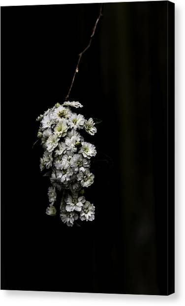 Bouquet Of White Canvas Print