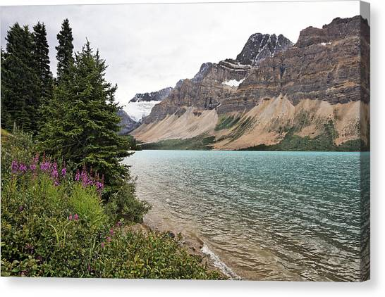 Bow Lake Scenic With The Crawfoot Glacier Canvas Print by George Oze